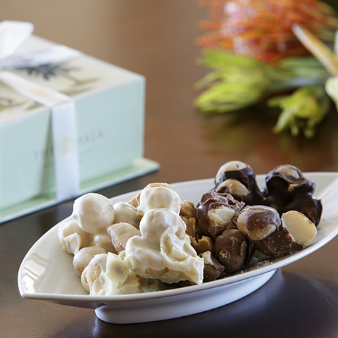 dakr chocolate and white chocolate covered macadamia nuts